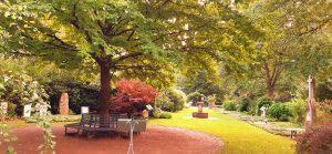 Ohlsdorfer Jahreszeitenweg Herbst@Parkfriedhof Ohlsdorf @ Friedhof Ohlsdorf